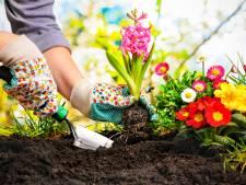 Leerdams tuincentrum huurt beveiliger in na spanningen tijdens zaterdagdrukte