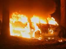 In berm geparkeerde auto brandt volledig uit in Oss: sporenonderzoek zinloos