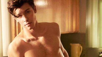 Shawn Mendes: het tieneridool dat eigenlijk een gewone jongen wil zijn