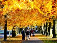 Twente op weg naar record door kurkdroge herfst