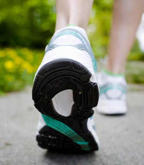 Voor de bikkels: 100 kilometer wandelen door Zeeuws-Vlaanderen