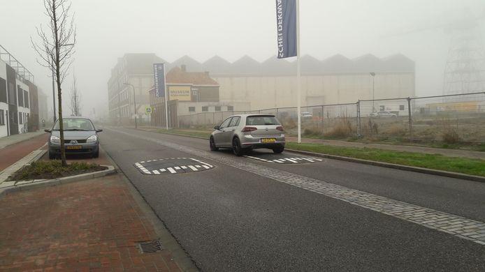 Verkeersremmers moeten de snelheid van automobilisten verminderen op De Willem Ruysstraat in Vlissingen.