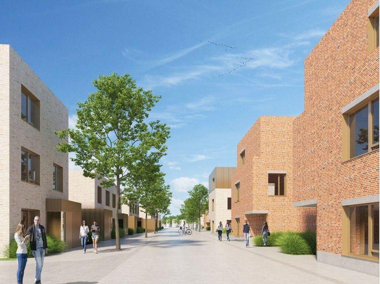De Mandel levert duurzame een bijdrage aan megaverkaveling Roobaertpark: 20 huurwoningen, 49 huurappartementen en 15 koopwoningen.