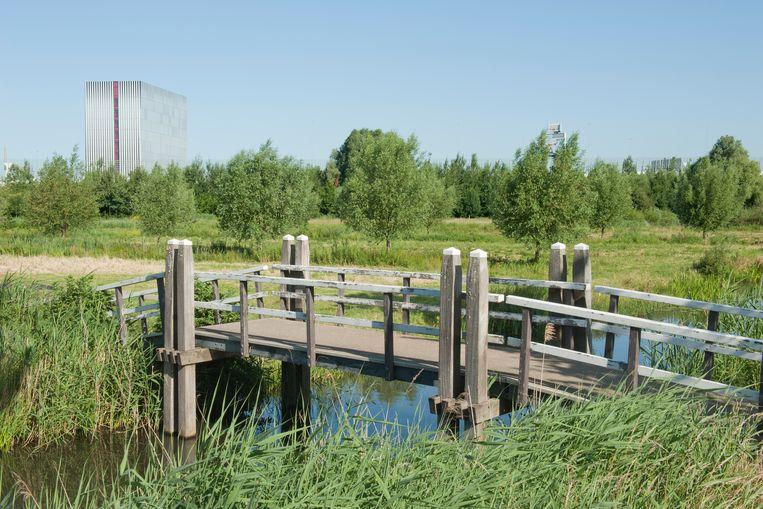 Beeld gemaakt vanuit Diemen, Hofstedenweg. Aan de overzijde van de A10 staat het data center Equinix op het Science Park. Beeld Ko Hage