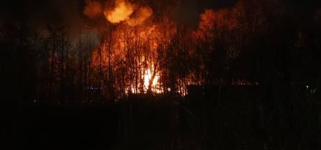 Grote, uitslaande brand bij Buhne Auto's in Veldhoven: NL-Alert verzonden vanwege rookontwikkeling