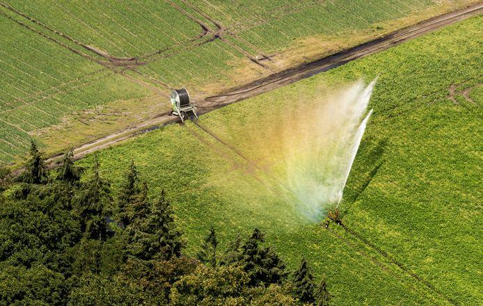 Het Waterschap Vallei en Rivierenland verbiedt het onttrekken van water uit sloten en beken om land te beregenen.