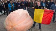 De grootste pompoen ter wereld? Die is van een Belg