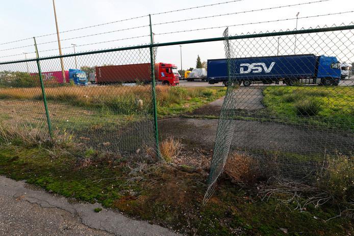 Via gaten in de hekken proberen vluchtelingen in vrachtwagens richting Engeland te klimmen.