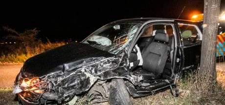 Twee gewonden nadat auto uit de bocht vliegt en bomen raakt in Doesburg