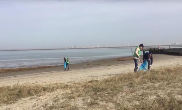 Het strand van Hoofdplaat.