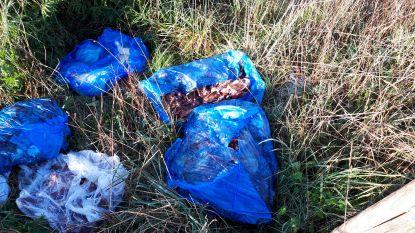 Tiental zakken met vleesresten gedumpt langs trage weg