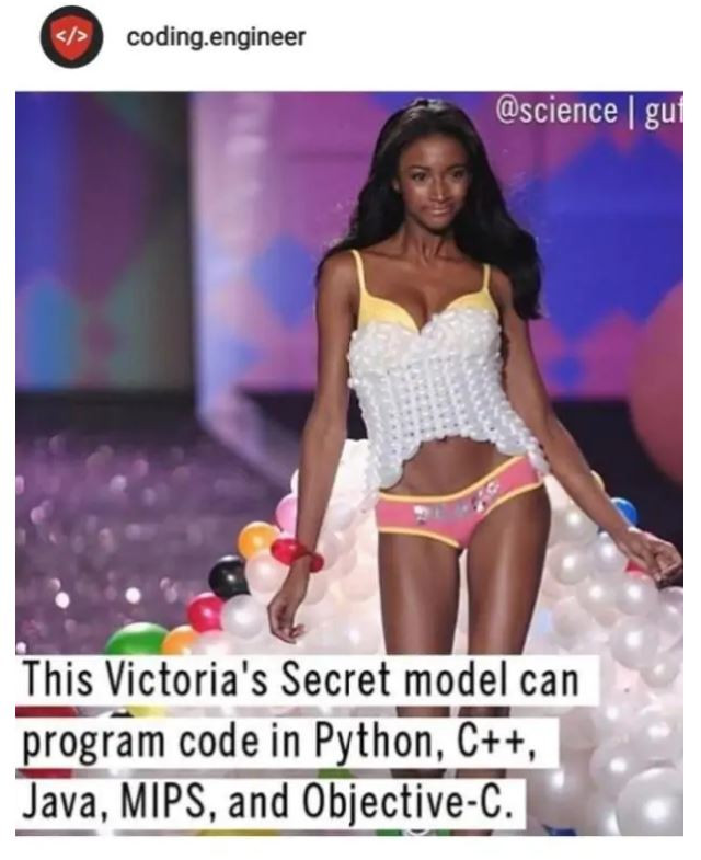 De foto van Scott als Victoria's Secret-model, die viraal ging via de account van Code Engineer.