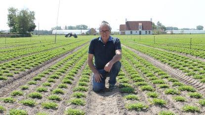 """Landbouwer houdt opvallend pleidooi in droogste lente in 119 jaar: """"Maak de regels voor een eigen vijver of bekken soepeler"""""""