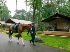 Ommer camping springt in op ,,groeiende vraag naar kamperen met je paard''