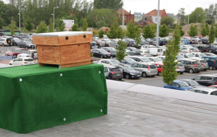 De bijen hebben zicht op de parking.