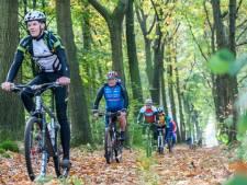 Veluwse bossen werken als magneet op fietsers uit het westen