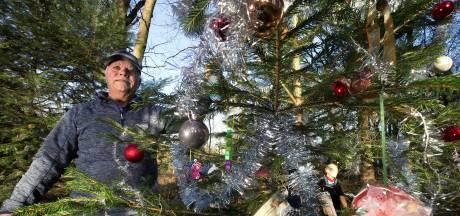 Henk krijgt veel warme reacties op de kerstboom die hij versiert voor zijn Rietje: 'In één woord geweldig'