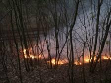 Treinverkeer ligt plat door branden langs spoorlijnen