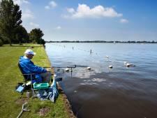 Zwemmen mag in Loosdrechtse Plassen ondanks negatief zwemadvies