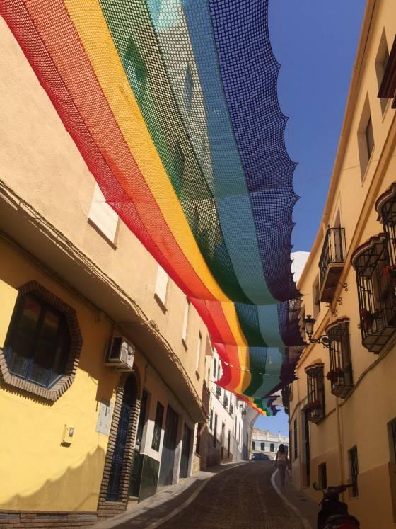 De bewuste regenboogvlag is een teken van gelijkheid.