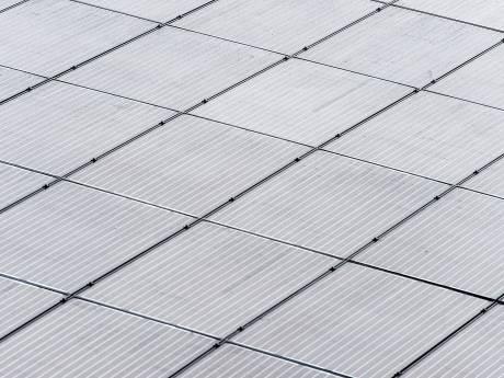 Ondanks kritiek omwonenden staat raad Raalte positief tegenover zonnepark bij Kanaaldijk-Zuid in Heino