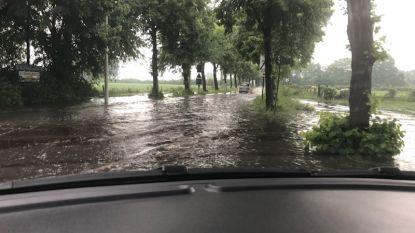 Hevig onweer trekt over noorden van Antwerpen, Brecht kondigt gemeentelijk rampenplan af
