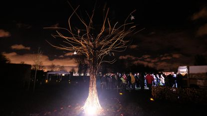 'Vergeten' kindjes stralen in Sterretjesboom