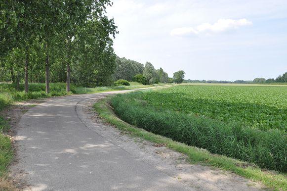 In een weiland langs deze weg werd het lichaam gevonden.