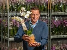 Deze 2 bedrijven werken superslim samen: 'We gebruiken de warmte van plastic voor plantenteelt'