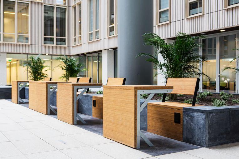 Houten bankjes en tafeltjes in het atrium van het Erasmus MC. Beeld null