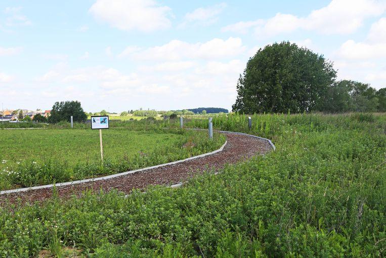 Het parocurs van de Finse piste loopt tot tegen het natuurgebied Waarbeek waar de buizerds hun nest hebben.