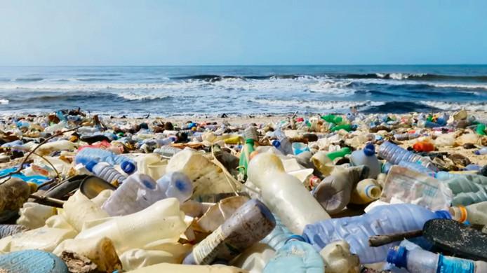 Afvalplastic in de wereldwateren schaadt de gezondheid van mens en dier.