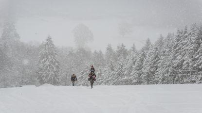 KMI waarschuwt voor sneeuwval in Wallonië, kans op hagel in Vlaanderen
