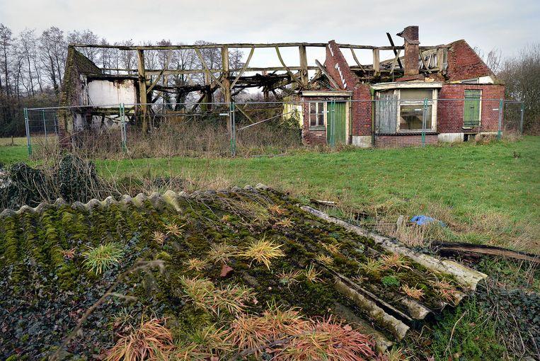 Vervallen boerderij in Geesteren: het dak is ingestort, de muren brokkelen af, mos en onkruid zijn de nieuwe bewoners. Beeld Marcel van den Bergh / de Volkskrant