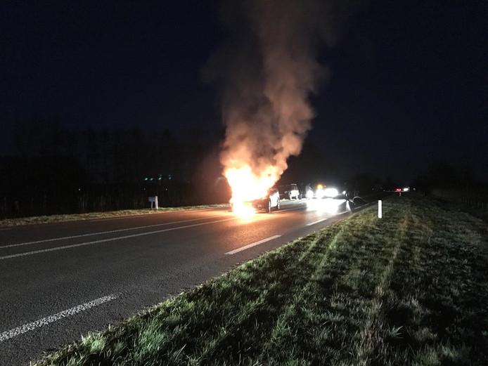 Auto vliegt in brand na aanrijding met kalf.