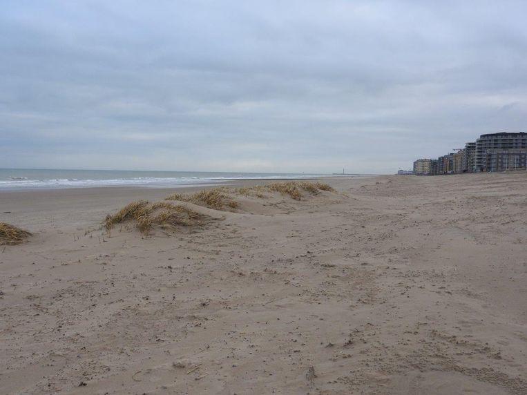 Tussen Mariakerke en Raversijde in Oostende werden enkele jonge duinen met de bulldozer compleet van de kaart geveegd. Zo zagen de duinen er voordien uit...