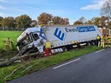 Vrachtwagen raakt van de weg en ramt boom uit de grond in Duiven, chauffeur gewond