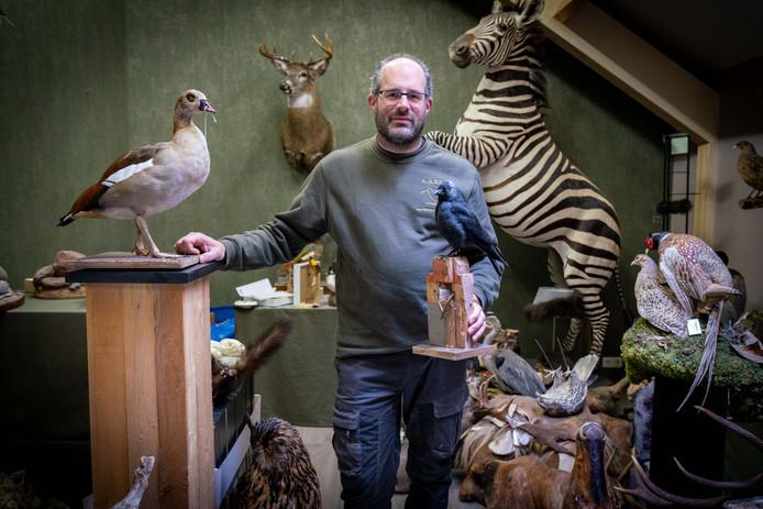 Dierenpreperateur Alexander Bisseling in zijn showroom