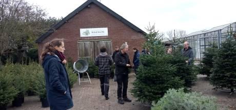 Kerstboom nu al in trek in de regio: 'Het gaat heel hard'