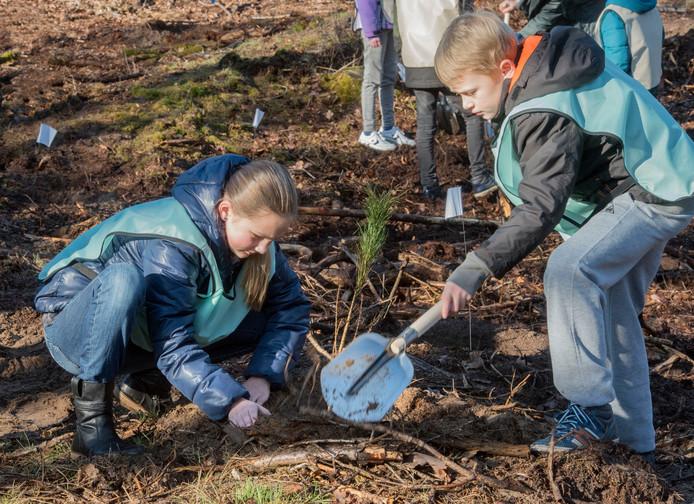 Kinderen gaan duizend bomen planten op landgoed Ter Hooghe in Middelburg.