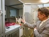 Allergische burgemeester bezoekt dierenasiel