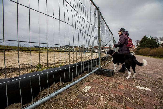In januari werden schermen neergezet rondom het terrein bij Molenslag zodat er niet meer dieren zouden komen.