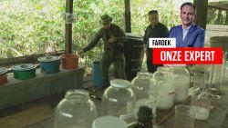"""Faroek trekt exclusief op onderzoek naar drugsgeweld: """"Bij politie in Colombia staat op Europese kaart één rode vlek: Antwerpen"""""""