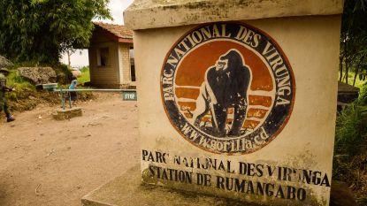 Zeker 12 rangers van Virungapark gedood bij aanval bij Goma