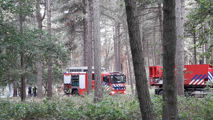 Meerdere wagens naar natuurbrand aan Peeldijk in Bakel