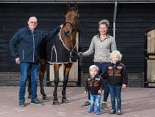Afzadelen na 14 jaar wedstrijdsport emotioneel moment voor Rekkense paardenfamilie: 'Van Varola is er geen tweede'