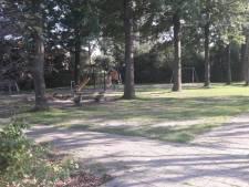 Jongen (16) steekt 13-jarig meisje met aardappelschilmesje in hand als ze vriendin te hulp schiet