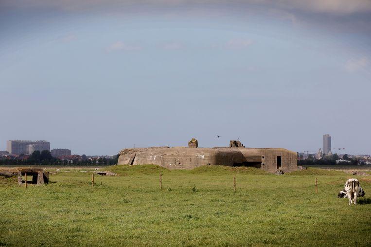 Het hinterland van Middelkerke heeft heel wat te bieden.