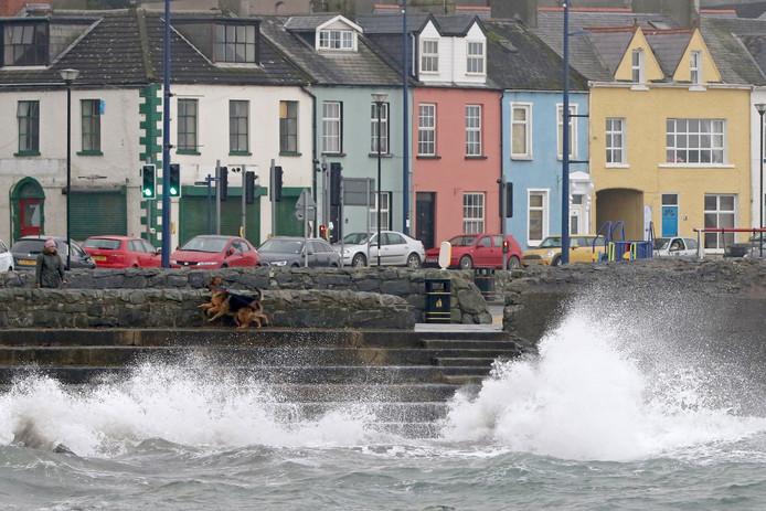 Een vrouw laat haar honden uit in het Ierse kustplaatsje Donaghadee.