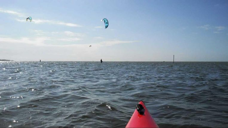 Kitesurfers Beeld
